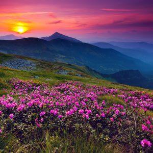 Mountain Landscape - Designer Splashback