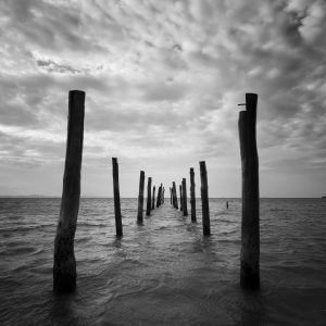 Wooden Poles at Sea (Black and White) – Designer Splashback