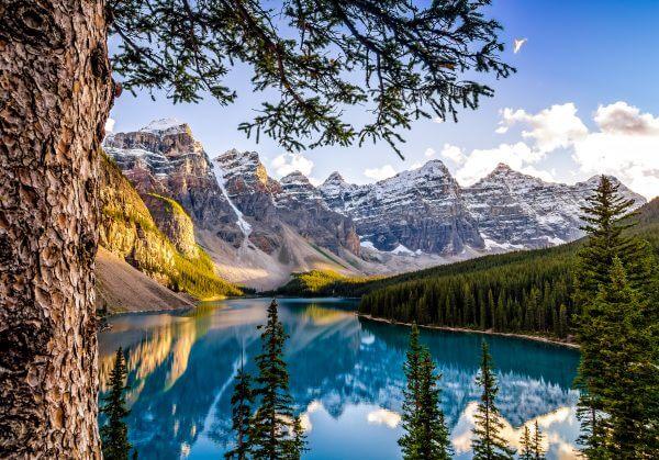 Beautiful Lake View - Designer Splashbacks