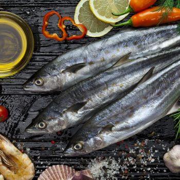 Fish and Oil - Designer Splashbacks